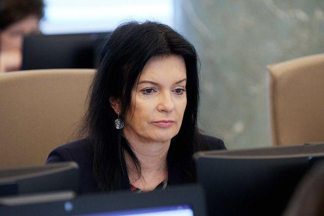 Petraviča norāda uz VBTAI iedibinātā uzraudzības modeļa neefektivitāti