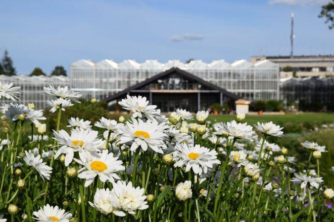 """Nacionālajā botāniskajā dārzā Salaspilī veido jaunu vides izglītības un informācijas centru """"Botania"""""""