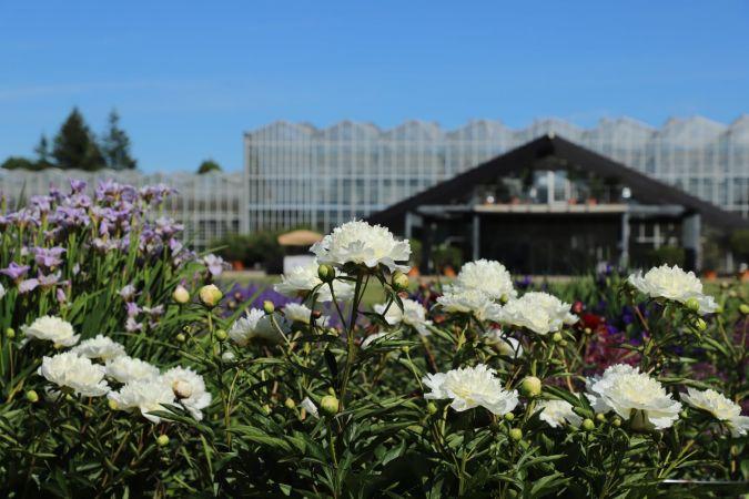 Skolēnu ekskursijas Nacionālajā botāniskajā dārzā