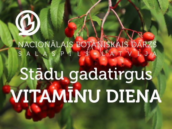 Vitamīnu diena Salaspilī – 18. septembrī