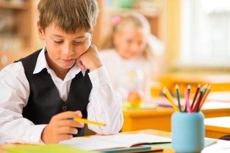 Pētījumā ieteikts attīstīt Druvas vidusskolu kā vienu no labākajām lauku skolām valstī