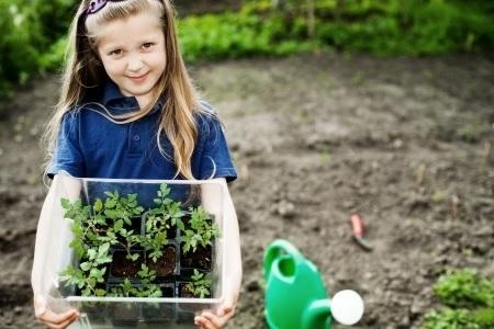 Rīgas bērnudārzos parādījušies zemas kvalitātes dārzeņi