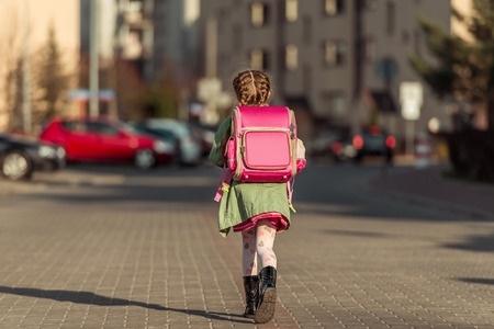 Vairākās Īrijas skolās plāno piedāvāt iespēju apgūt lietuviešu valodu